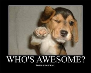 whos_awesome